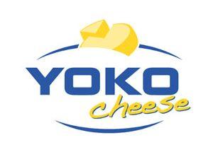 Yoko_Cheese.jpg